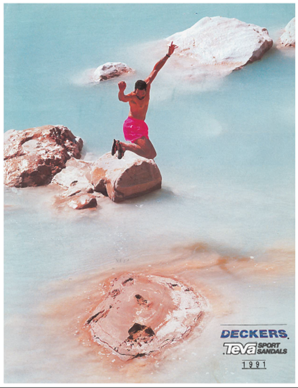 The cover of our 1991 catalog.