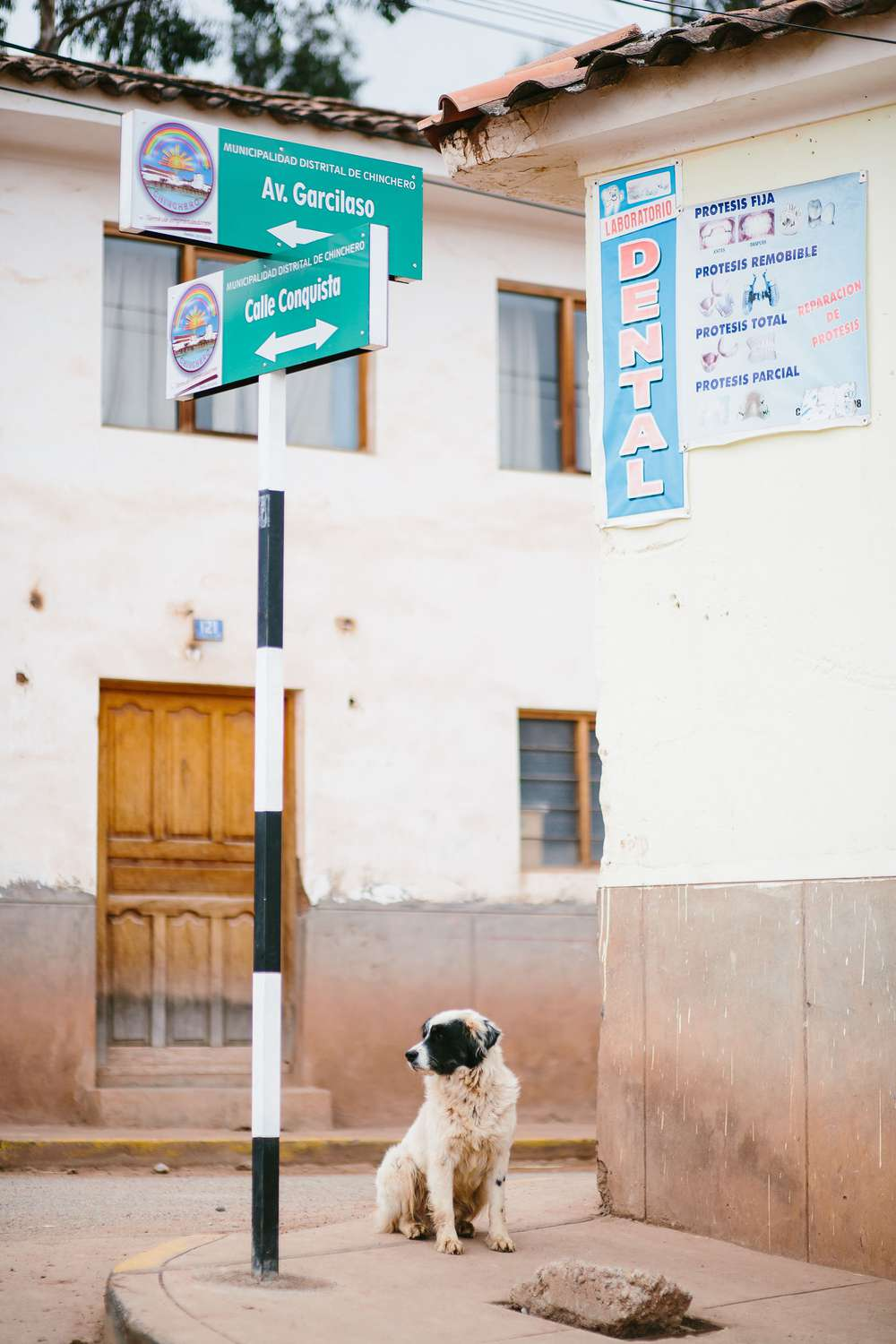 Dog sitting by street sign Peru
