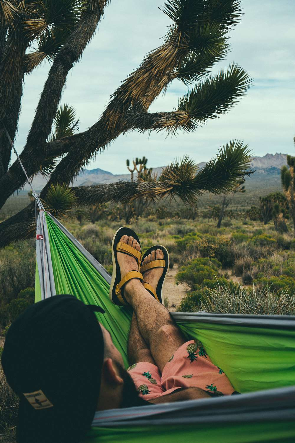 Man sitting in hammock in desert