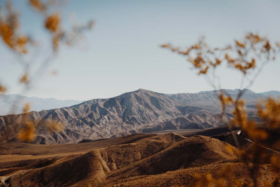 The colorful hills and valleys of Death Valley National Park in California, shot through orange brush.