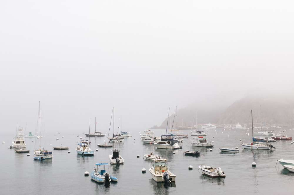 A foggy day at the harbor on Catalina island.