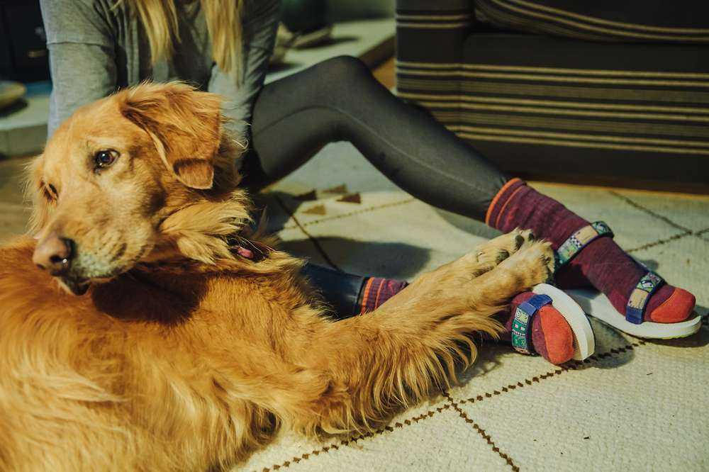 Kylie Fly wears socks and sandals with a canine friend in her cozy A-frame cabin.