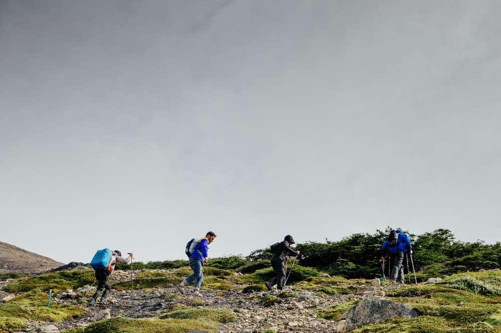 Hikers in Patagonia field
