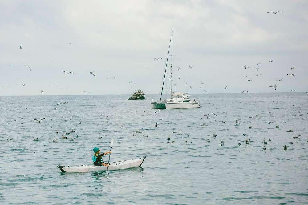 Woman paddling kayak in ocean Santa Cruz Island