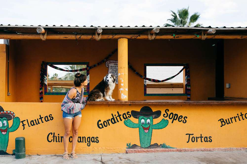Tara Michie says hello to a dog by a taco stand in Todos Santos, Mexico.