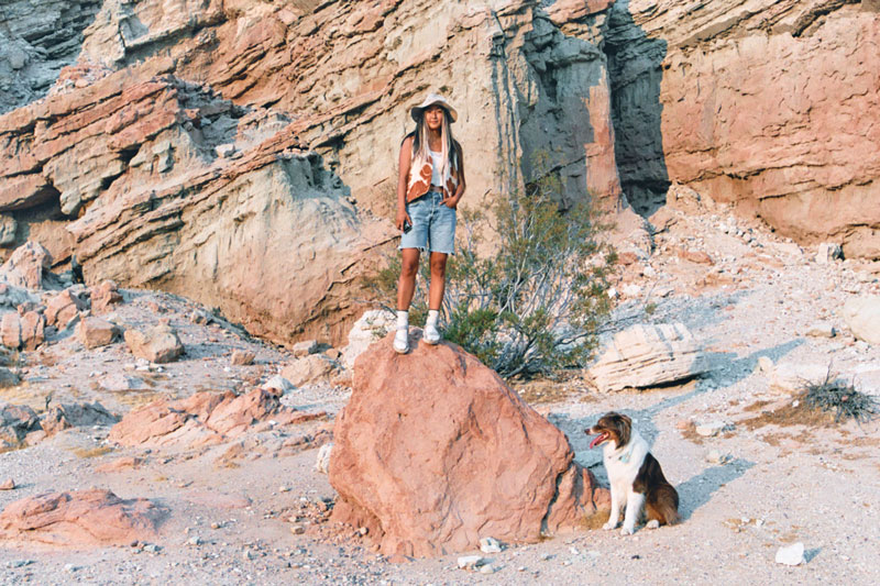 Home on the Road: Vivian Kim's Desert Diary on Film