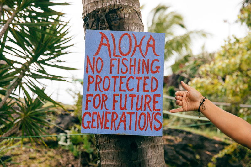 Aloha No Fishing