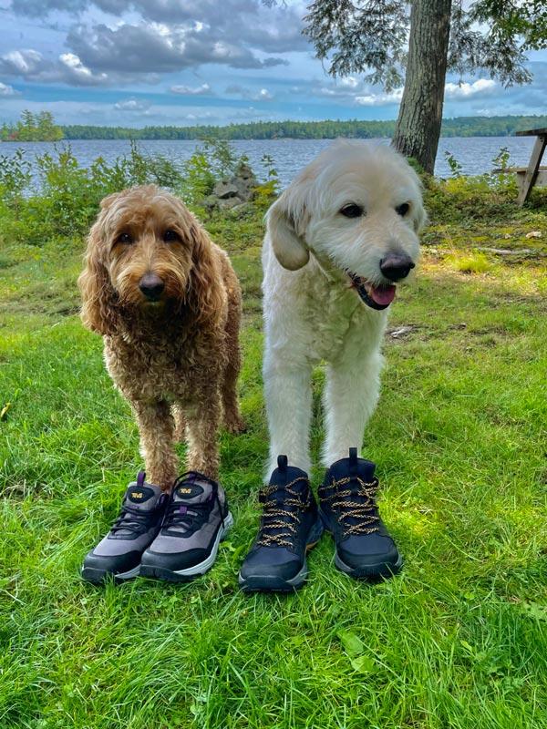 Teva Grandview hiking shoes.